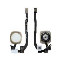 Botón Home Completo con Flex y lector de huellas ID iPhone 5S -Oro