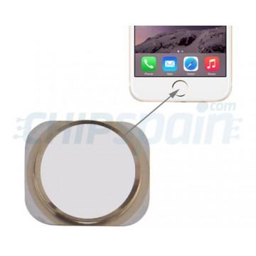 Botón Home iPhone 6 -Blanco/Oro