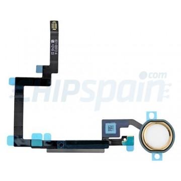 Botão Home Completo com Flex iPad Mini 3 Branco