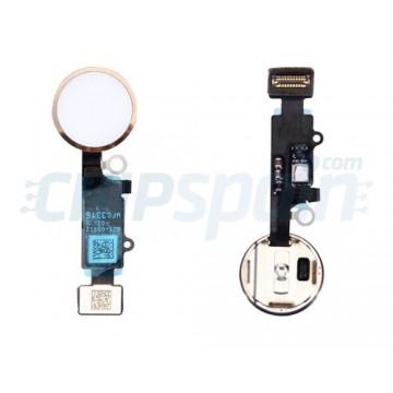 Full Home Button Flex iPhone 7 iPhone 7 Plus Gold