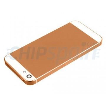 Carcasa Trasera iPhone 5 - Cobre / Blanco