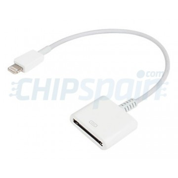 Lightning adaptor for Apple