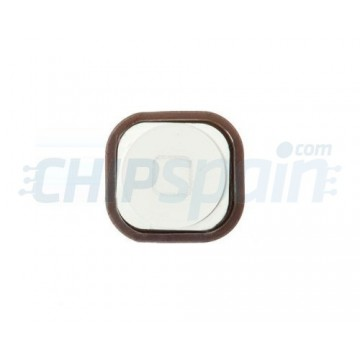 Home Button iPod Touch 5 Gen. -White